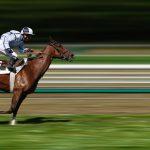 Diversi tipi di posture a cavallo durante una gara