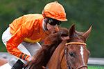 una disciplina dell'ippica, corsa cavalli