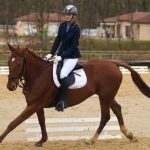 Abbigliamento equitazione inglese e western