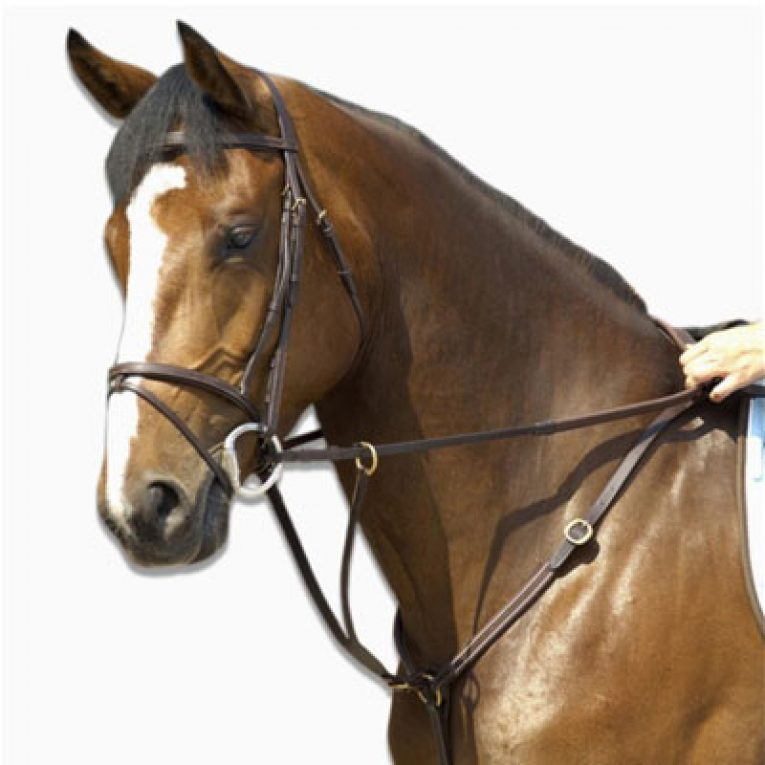 Martingala cavallo