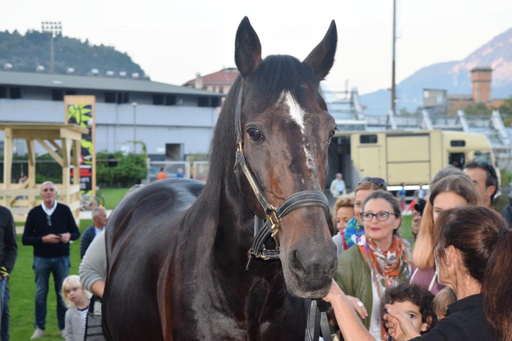 Varenne, il cavallo leggenda