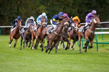 Corse cavalli – corse al galoppo
