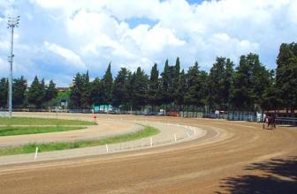 Corse Cavalli Follonica: Ippodromo Dei Pini (Trotto) GR
