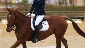 L'abbigliamento per equitazione: lo stile inglese e western