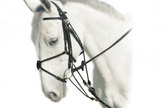 I finimenti del cavallo nella monta inglese