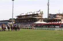 Corse Cavalli Roma: Ippodromo Capannelle (Galoppo) RM