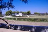 Corse Cavalli Capalbio: Ippodromo La Torricella (Galoppo) GR